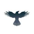 raven-protocol